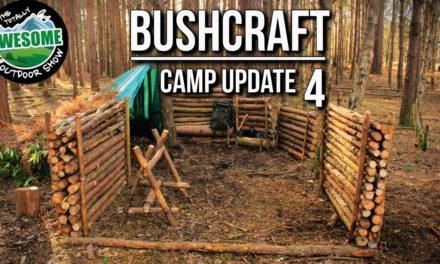 Bushcraft Camp Update 4 – Perimeter Walls Finished! | TA Outdoors