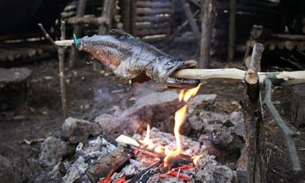 Catch n Cook – Spit Roast TIGER TROUT at The Bushcraft Camp