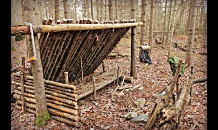 Solo Bushcraft Camp. Natural Shelter, Wool Blanket, Raised Bed, Long Fire.