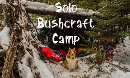 Solo Winter Bushcraft Camp